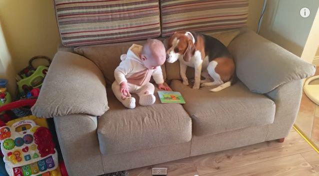 Melhor babysitter de sempre. Não vais acreditar no que faz!