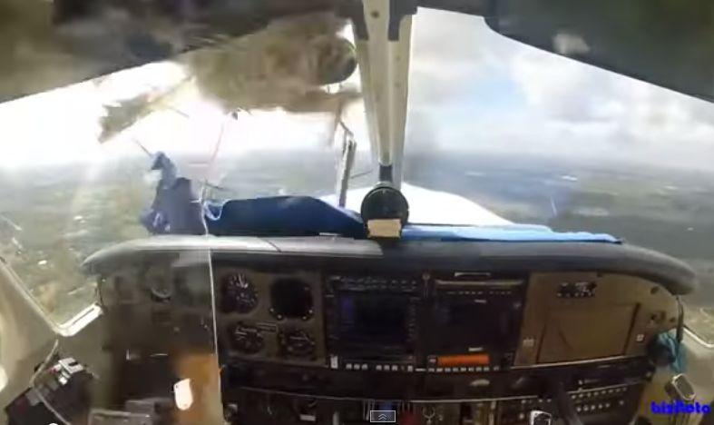 Pássaro atravessa vidro do avião e fere o piloto! Será que ele sobrevive? Chocante!