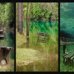 """Já viste algum parque submerso? É simplesmente """"mágico""""!"""