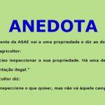 Anedota – Homem é denunciado por plantação ilegal