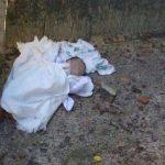 Cão salvou recém-nascido abandonado num terreno baldio!