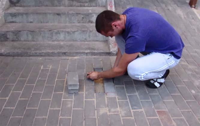 Ouviu barulhos vindos do chão, e decidiu arrancar a calçada…o que encontrou…CHOCANTE!