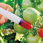 O que fazem com as frutas e legumes para que pareçam frescos é CHOCANTE!