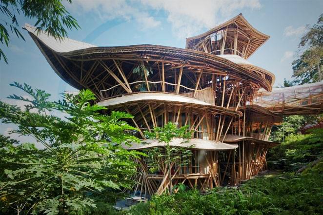 Conheçam a mulher que está a revolucionar a construção de casas, utilizando bamboo!