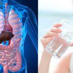 Beber água de estômago vazio! Nem imaginas o bem que te faz! IMPORTANTE LER!