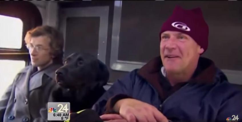 Esta cadela labrador está a ser notícia pelo mundo… quando vires porquê, vais ficar de boca aberta!