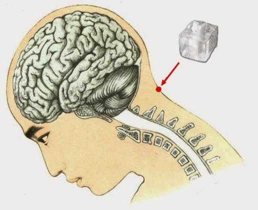 Inacreditável! Vê o que acontece quando colocas um cubo de gelo na parte de trás da cabeça!