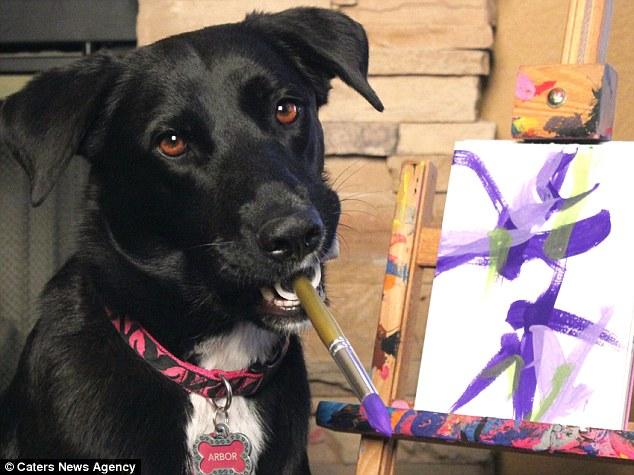 Arbor, a cadela resgatada da rua que pinta quadros para ajudar outros animais
