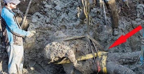 Um agricultor cavava no campo quando encontrou algo impressionante! O que estava debaixo do seu terreno…