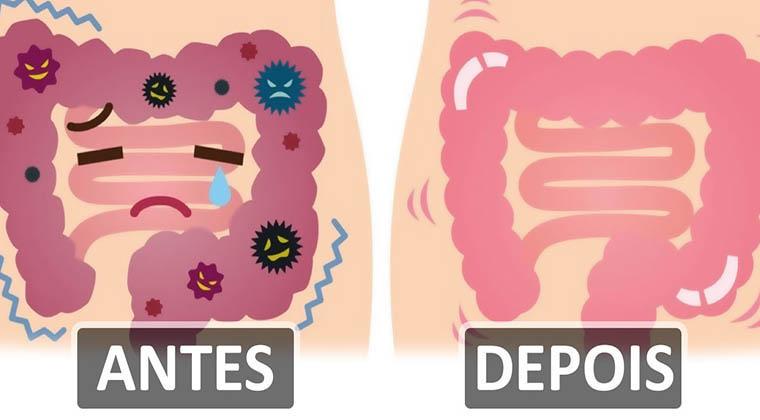 Estes 2 ingredientes juntos vão fazer com que libertes quase 2kg de toxinas dos teus intestinos!