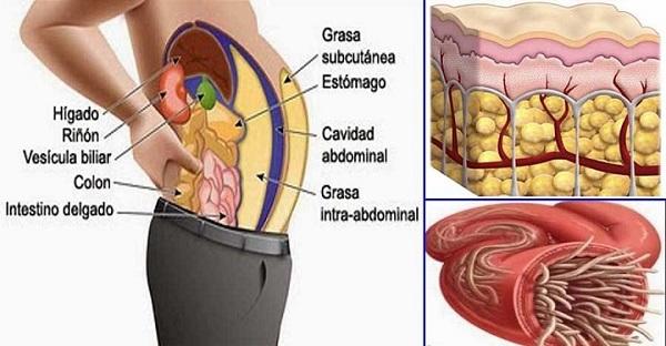 Chá com 3 ingredientes naturais que te vai secar a barriga e ainda te limpa as artérias!