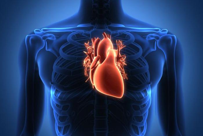 12 Sinais que podem ajudar-te a identificar problemas de coração! Podem salvar-te a vida! É importante que os conheças!