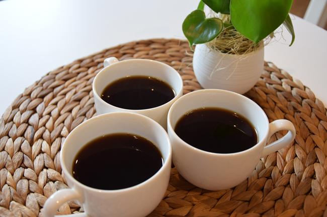 ch� de fezes de elefante