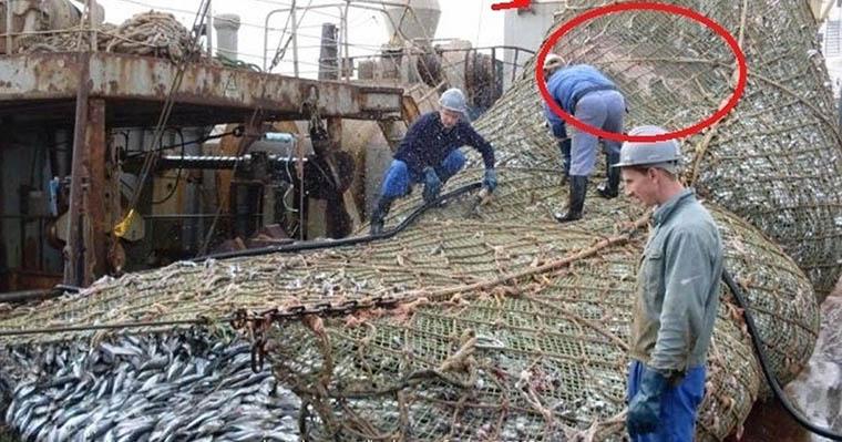 Estes pescadores apanharam algo incomum nas redes que semeou o pânico a bordo do barco!