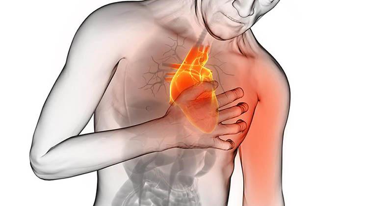 90% Das doenças cardiovasculares podem ser prevenidas! São estas as 5 chaves para esta prevenção!