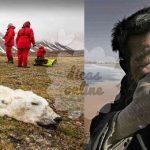 Estas fotos mostram o sofrimento que estamos a causar no planeta Terra! É chocante a realidade que escondem!