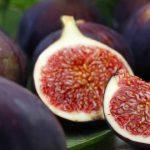 O Figo não é uma fruta! E não vais acreditar quando souberes o que ele é na verdade!