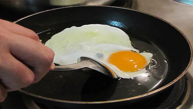 Esta é a forma mais saudável de fritar um ovo! E sem gordura! Nunca pensei que fosse tão fácil e rápido!