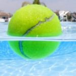 Quando as pessoas saem da piscina, ele lança bolas de ténis na água. Brilhante!