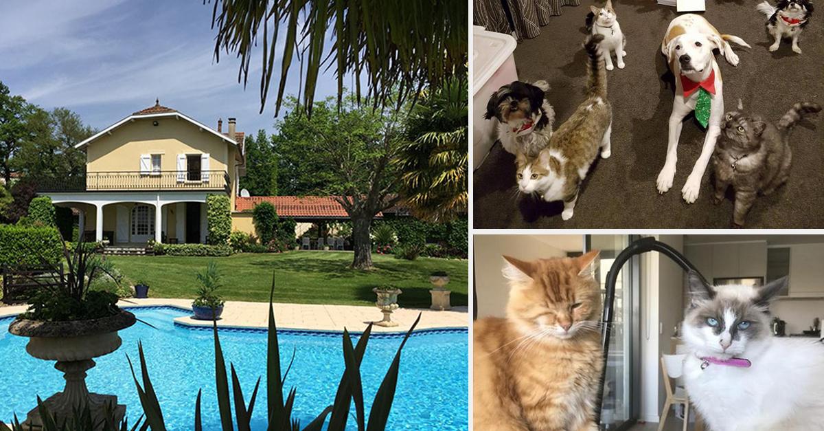 Este site permite que viajes gratuitamente por todo o mundo se concordares cuidar de animais de estimação de outras pessoas!