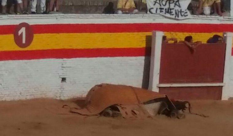 Este cavalo ficou ferido durante uma tourada… O tratamento que lhe deram está a chocar o mundo inteiro…