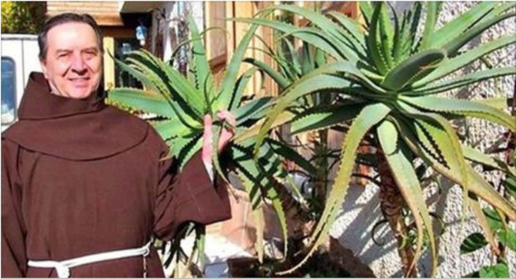 Frade passou anos a estudar esta planta e afirma que o cancro pode ser curado por ela! É esta a receita!