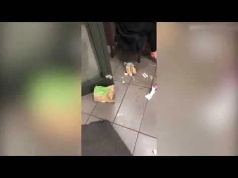 Extrema sujidade registada em vídeo no interior de McDonald's!