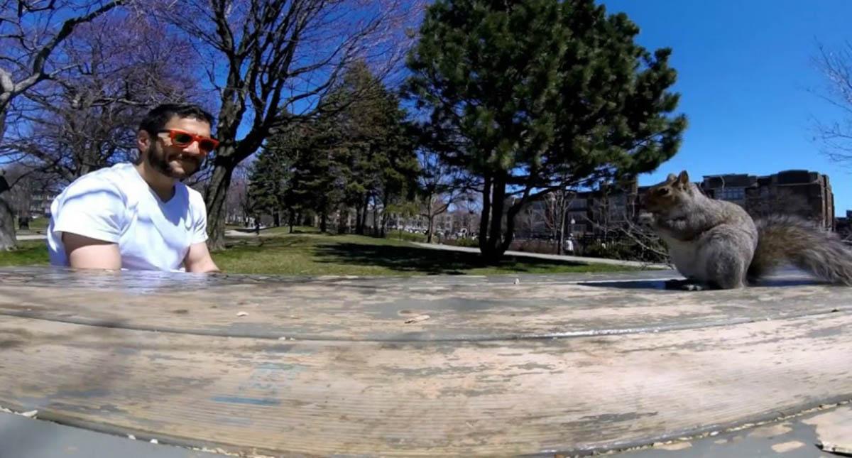 Esquilo foge com câmara de filmar e fez um vídeo engraçado!